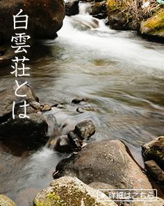 奥湯河原の自然