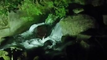 川面 ライトアップ